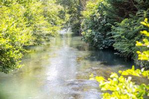 La Provence - rivière